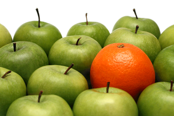 Water Tank Warranties – Are you comparing apples with apples?